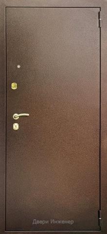 Порошковая дверь DR222