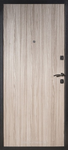 Дверь с ковкой DR258